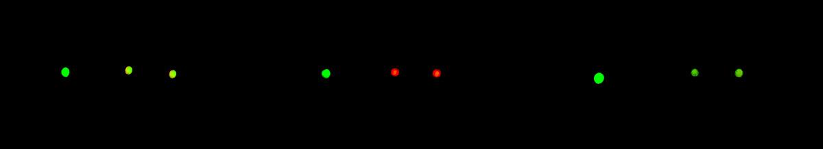 NightSights-Dark-02-Narrow